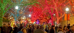 Lincoln Park Zoo Lights Festival